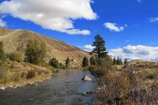 West Suburban Reno